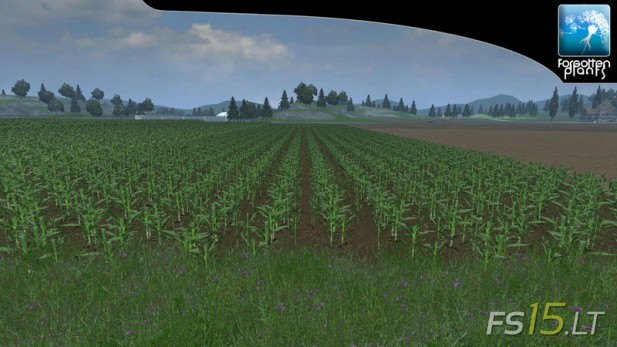 Forgotten-Plants-Maize-v-1.0-2