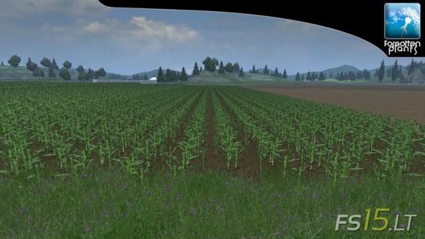 Forgotten-Plants-Maize-v-1.0-2