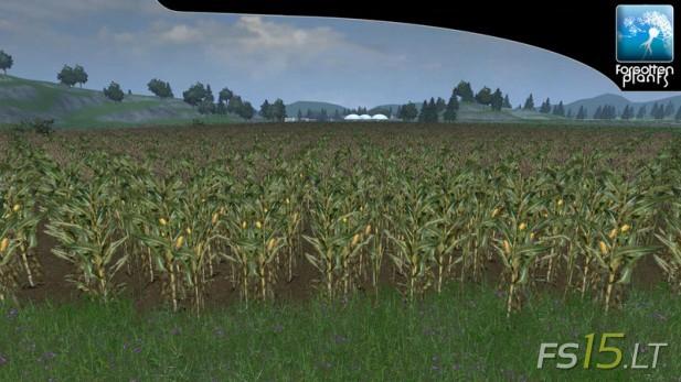 Forgotten-Plants-Maize-v-1.0-3