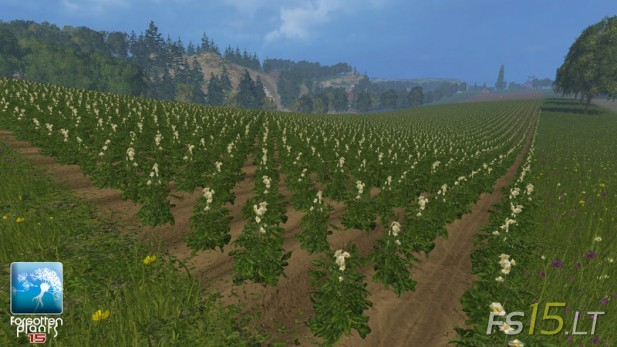 Forgotten-Plants-Potatoes-v-1.0-2