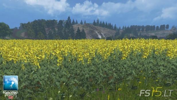 Forgotten-Plants-Rape-v-1.0-3
