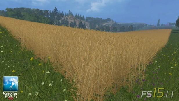 Forgotten-Plants-Wheat-and-Barley-v-1.0-2