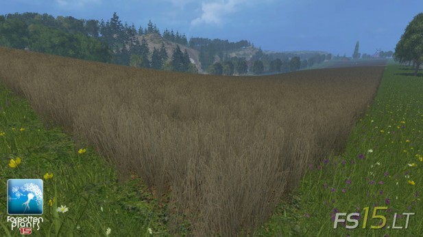 Forgotten-Plants-Wheat-and-Barley-v-1.0-3