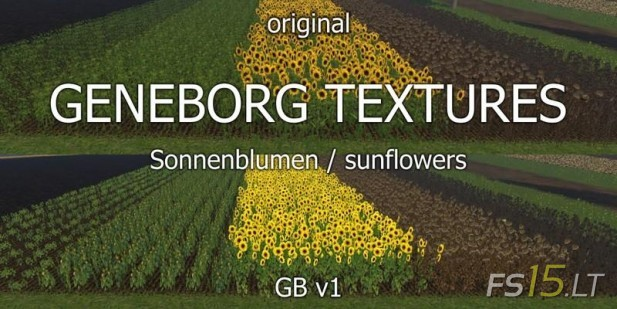 Sunflowers-Textures-v-1.0