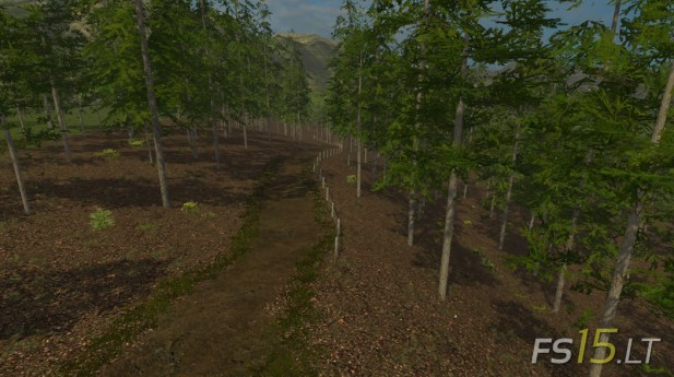 Farmer's Land (3)