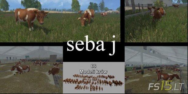 Cows-1